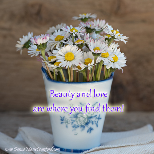 Love and beauty are where you find them!