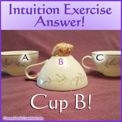 Intuition Exercise Answer