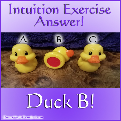 Intuition Test